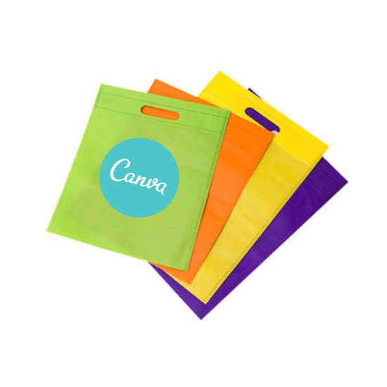 Custom Promotional Recyclable Non Woven PP Bag with Printing