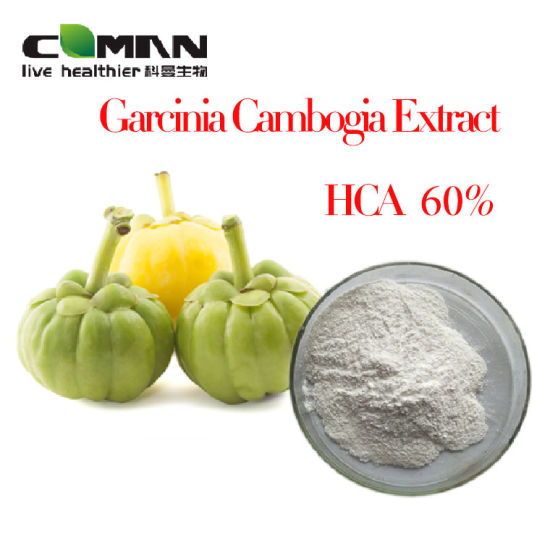 Best Price Garcinia Cambogia Extract Powder Hydroxycitric Acid Hca50 60 Cas 90045 23 1 Free Sample China Garcinia Cambogia Extract Hca 50 60 Made In China Com