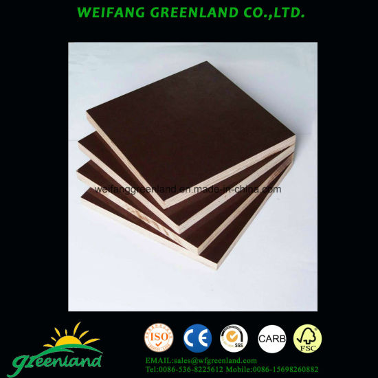 21mm Two Time Hot Press Quality Fillm Faced Plywood with Black Film