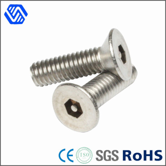 China Pan Head High Precision Bolt, Full Thread Socket Gr2