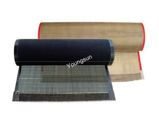 High Temperature PTFE Open Mesh Fiberglass Cloth (YS-6008) pictures & photos