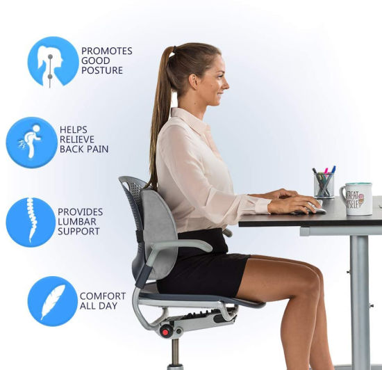 Office Chair And Car Seat Cushion