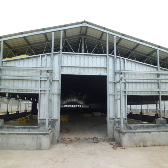 Construction Low Cost Steel Structure Farm Poultry Shed/Turkey House