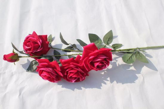 China Fresh Rose Artificial Flowers Real Touch Rose Flowers For
