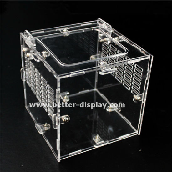 China Clear Acrylic Reptile Terrarium With Air Holes China Clear