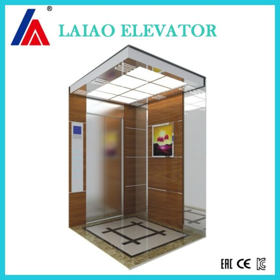 250kg Mrl Stable Running Passenger Home Villa House Glass Elevator pictures & photos