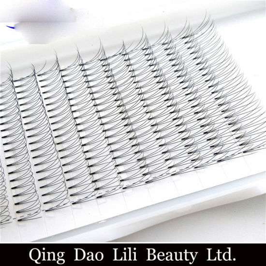 3e5255fa319 ... Fanned/Made Russian Volume Lashes. High Quality Private Label 0.07  0.10mm 2D 3D 4D 5D 6D Individual Pre Fanned/