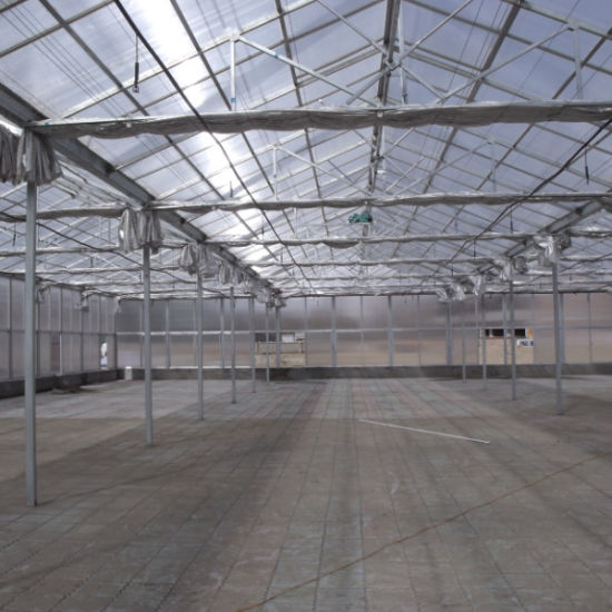 Commercial Agricultural PC Sheet Agricultural Greenhouse pictures & photos