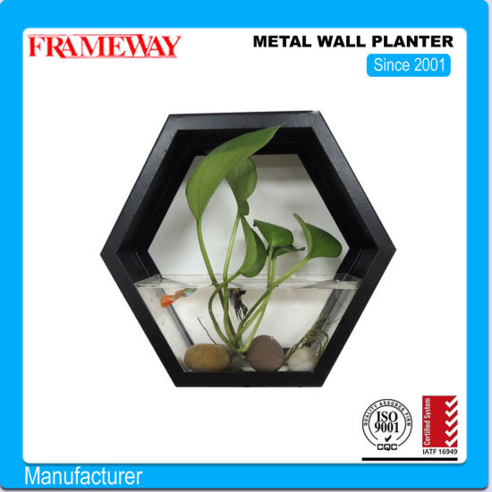 Custom Manufacturing Home Deco Hexgonal Metal Planter Powder Coated Sheet Metal Bending and Welding Fabricated