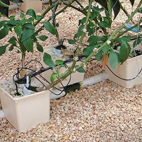 Grow Pots Dutch Buckets Bato Bucket Irrigation Strawberry Hydroponics System