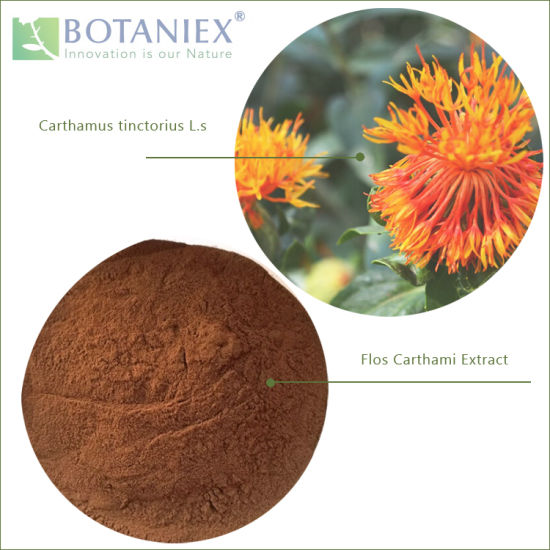 Best Selling Herbal Chinese Natural Quality Flos Carthami Extract (Carthamus tinctorius L.) 10: 1