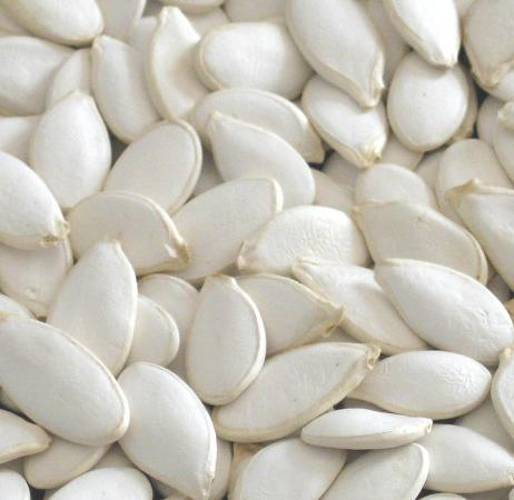 High Quality Snow White Pumpkin Seeds pictures & photos