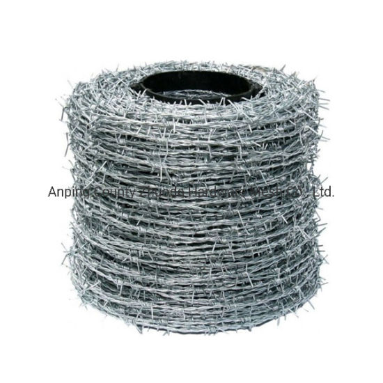 Made in China Electro Galvanized Barbed Wire Factory in Amazon pictures & photos