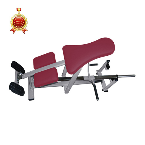 Commercial Gym Equipment Fitness Equipment for Back and Arm Trainer