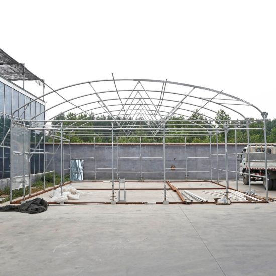 China Hot Sale Agricultural Greenhouse