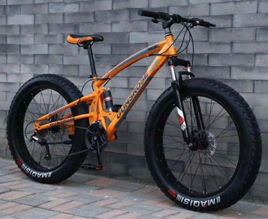New Design Fat Tyre Mountain Bicycle with 21 Speed Gear