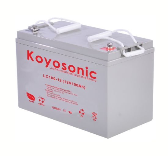 Koyosonic Battery 12V 100ah Sealed Lead Crystal Quartz Battery