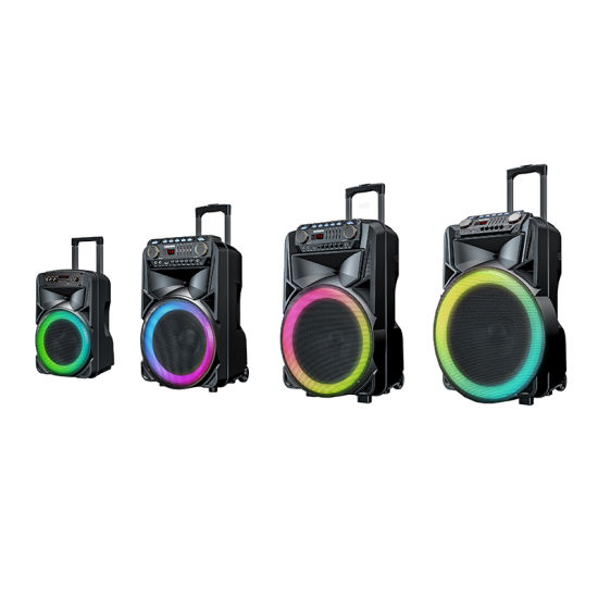 Bluetooth Speaker 12 Inch Karaoke Party Box Portable Plastic Active DJ Trolley Speaker with Built in Rechargeable Battery 2021