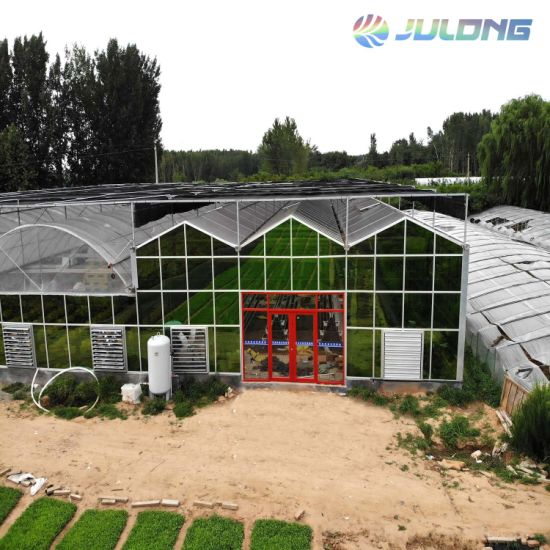 2019 Multi-Span Glass Greenhouses with Heating System