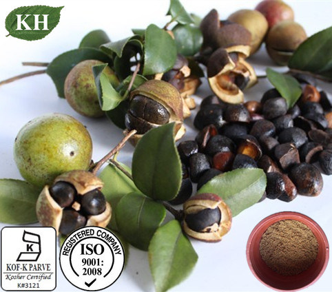 Natrual Camellia Oleifera Seed Extract Tea Saponins 90% for Skincare pictures & photos