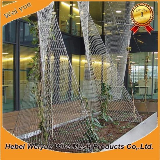Stainless Steel Wire Rope Net for Climbing Plant Support