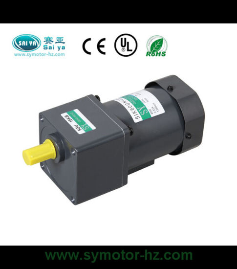 60W AC Induction Motor Motor De Engranaje pictures & photos