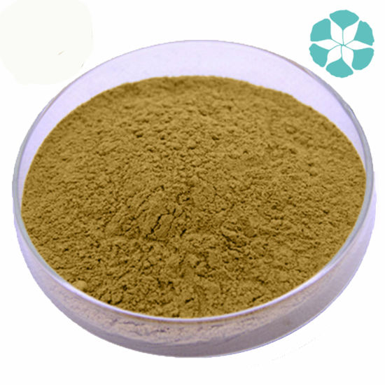 Tongkat Ali Extract / Eurycoma Longifolia Extract pictures & photos