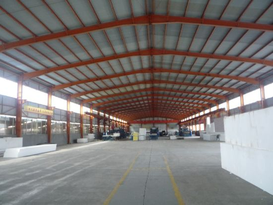 Steel Structure/Pre Engineered Steel Structure (SS-48)