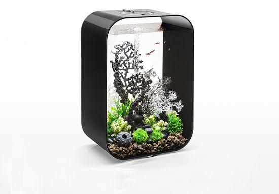 China Creative Home Decoration Acrylic Aquarium Fish Tank China Fish Tank And Table Fish Tank Price