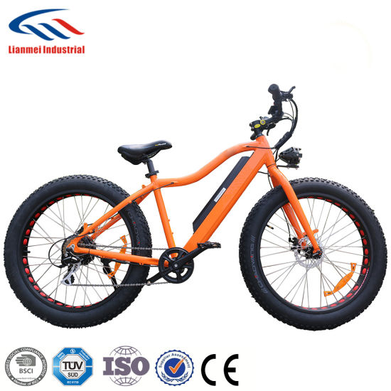 500W 48V Fat Electric Bike pictures & photos