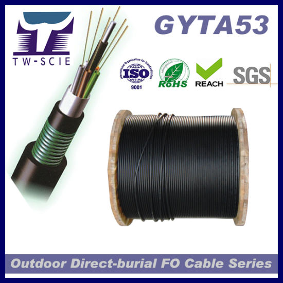 Stranded Direct Buried Optic Fiber Cable (GYTA53 24core) pictures & photos