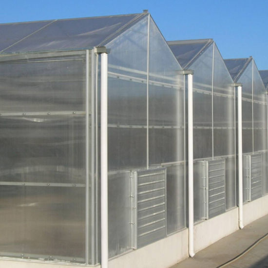 China Polycarbonate Sheet Plastic Glass Green House for Vegetables