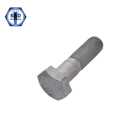 ASTM A325 Type1 Heavy Hex Structural Bolt H. D. G