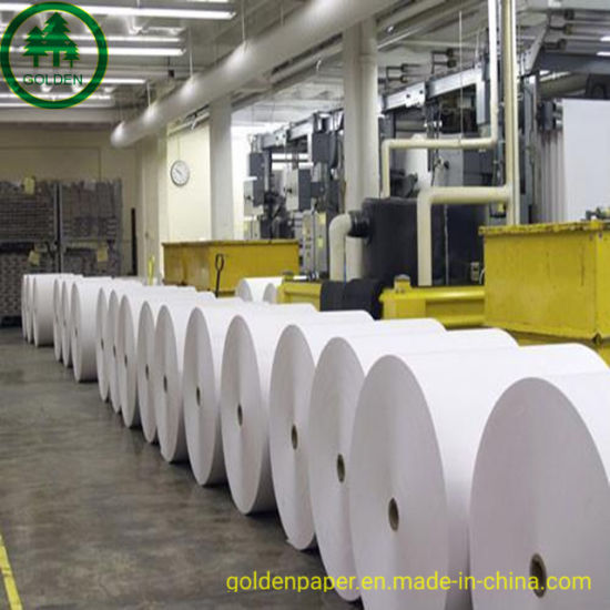 Couche Paper Golden Paper Company