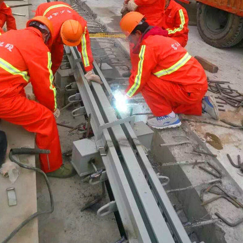 Bridge Expansion Joint pictures & photos