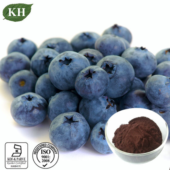 Natural Bilberry Extract Anthocyanidins 15%-25%, Anthocyanins 15%-35% by HPLC pictures & photos