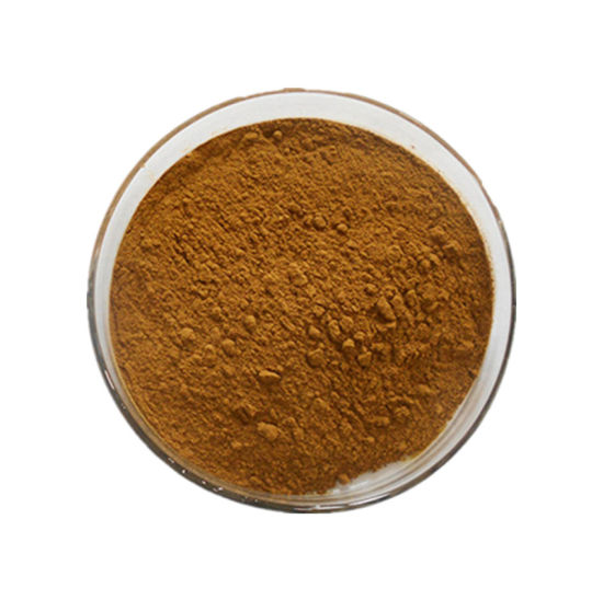 High Quality Plant Extract Powder 70% Silica Bamboo Leaf Extract for Skin