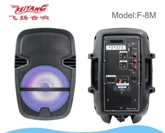 Feiyang/Temeisheng Portable Bluetooth Outdoor 8inch Speaker with Light F-8m pictures & photos