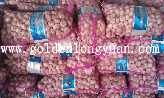 4.5cm Normal White Garlic Packed with 10kg Mesh Bag pictures & photos