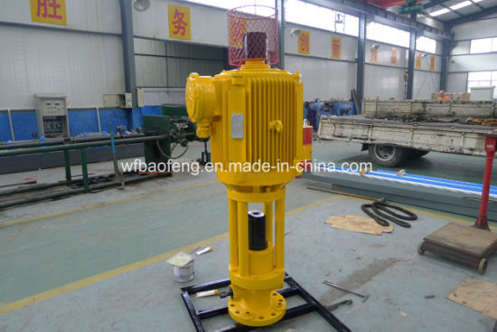 Petroleum PC Pump Screw Pump Surface Direct Driving Device 22kw pictures & photos