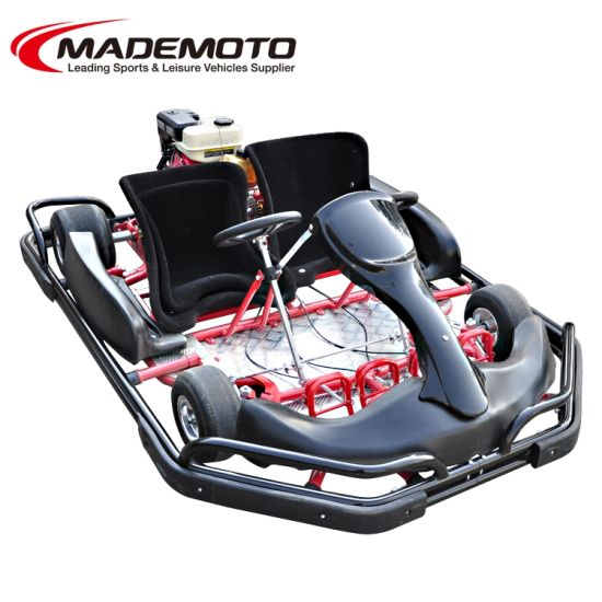 2 Seats Racking Go Kartings with Double Steering Wheels Driving Go Karts for Adults