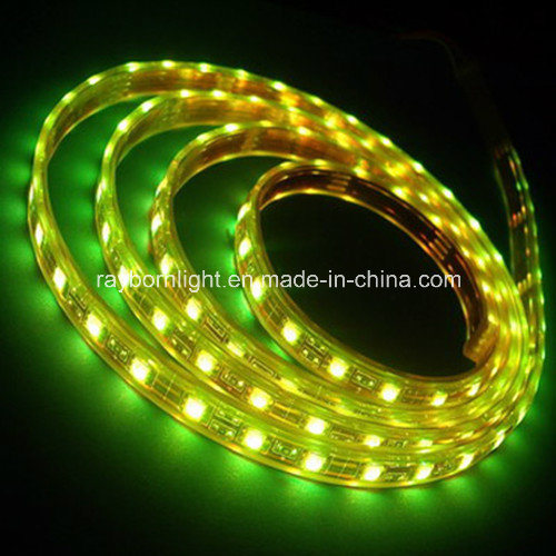 Waterproofip65 12V/24V SMD5050 RGB LED Strip Light with Remote Controller pictures & photos