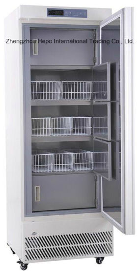 VIP Model, High Quality End-25degree Deep Freezer (270L) pictures & photos
