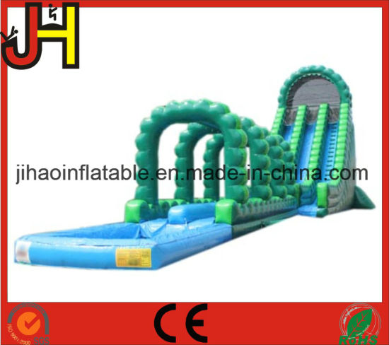 Giant Inflatable Slide, Inflatable Slip N Slide for Sale pictures & photos