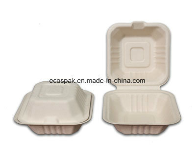 """Unbleached Eco-Friendly Biodegradable Compostable Disposable 6"""" Burger Box & Food Container"""