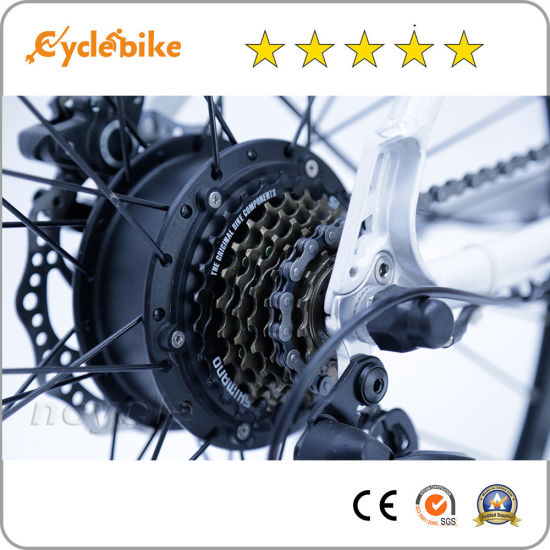 36V 250W Cassette Electric Bicycle Brushless Hub Motor with Ce