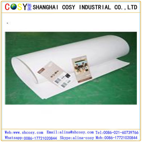 PP Synthetic Paper for Printing and Advertising pictures & photos