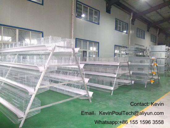 Poultry Farm Layer Chicken Cage Chicken Coop for Africa