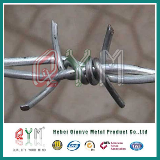 China Double Twisted Razor Blase Barbed Wire /Barbed Wire Fencing ...