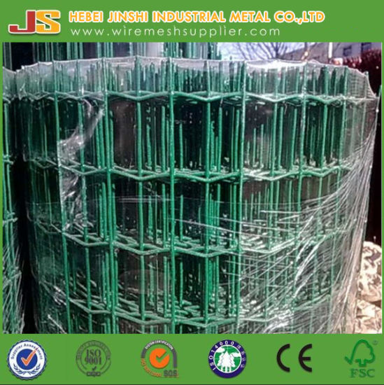 PVC Coated Euro Fence Holland Wire Mesh Fence Chick Fence Made in China pictures & photos